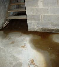 Flooding floor cracks by a hatchway door in Griggsville