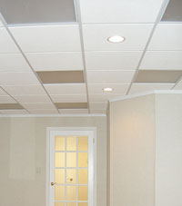 Basement Ceiling Tiles for a project we worked on in Rushville, Illinois, Iowa, and Missouri
