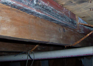 Rotting, decaying wood from mold damage in Keosauqua